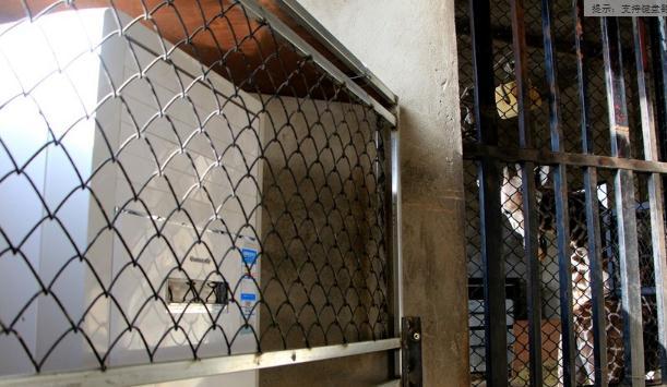 长颈鹿所居住的几个房间里都装上了空调。