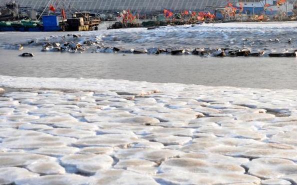 连云港市受低气温影响,西墅渔村海边的渔船和沙滩被大面积的冰凌围住。