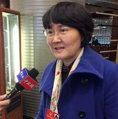 全国政协委员、民建中央调研部部长蔡玲