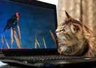 世界上的最遥远的距离,是从一扇窗,到一张屏。    智能手机、平板电脑、电视、互联网……很少有人能够生活在没有它们的世界。那么,猫的世界是如何回应现代技术革命的出现呢?正如你所看到这些图片,猫猫都不知道该相信什么了。是老鼠或电脑配件?是一个毛线球还缠绕的电缆线?电视机变小了还是我变胖了?在电脑中的那些鸟好吃吗?现代技术对人类的影响估切不谈,喵儿们心理阴影面积一定不小吧。