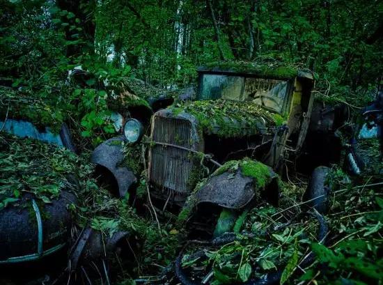 克莱因刚刚出版的摄影集中囊括了许多被弃经典汽车的照片,比如锈迹斑斑的捷豹、被苔藓覆盖的雪铁龙等汽车。他说,这些照片都未经过修饰编辑,仅是为了对比和颜色矫正,进行过技术处理。
