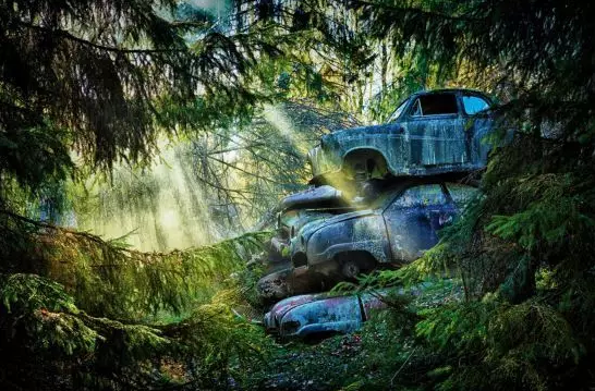 阳光透过树林,照射在斑斑驳驳的废旧的钢铁上。几辆叠在一起的老旧的汽车,在阳光下奔跑了无数公里之后,此刻终于又重见了阳光。