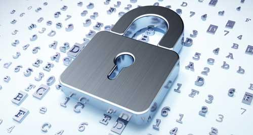 白帽黑客:网络安全维护 还是非法攻击?