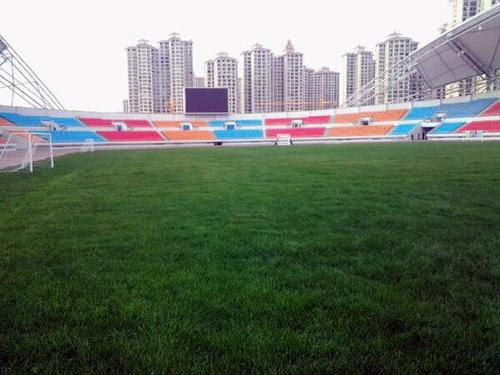 """陕西汉中笼式足球场项目采购 """"区别对待""""保质量"""