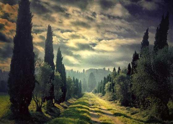 吉安卢卡·里科维利(Gianluca Ricoveri)出生于1950年,他总是致力于绘画和摄影艺术,并专注于两者之间的互动体验。