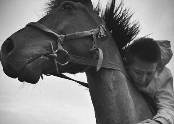 这是中国新疆自治区蒙古自治县的赏胡部落,中国业余摄影师牛思远用iPhone拍下少年骑骏马的风采。