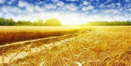 加快推进农业ppp投资_首页_首页幻灯片-政府采购信息网