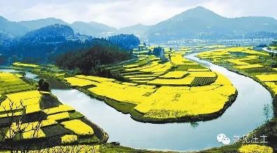 关于大力发展休闲农业的指导意见