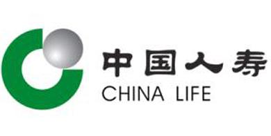 中国人寿与AIG共保组织合作