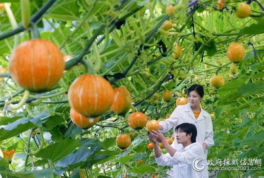 农业部5.jpg