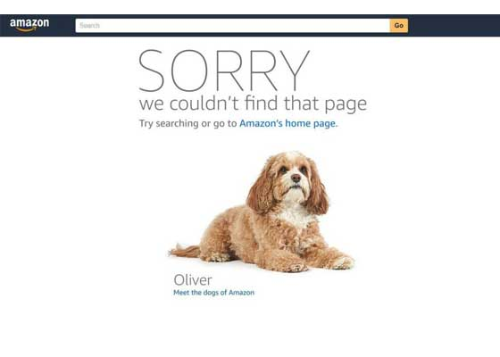 4.亚马逊网站    亚马逊也有404错误网页,你可以一遍遍刷新。每次刷新都会显示不同的狗,还有亚马逊职员对各种不同的狗的描述。比如,这只名为奥利弗的狗喜欢坐着和转圈,喜欢玩豪猪玩具。刷新后,你还可以看到以饼干命名的宠物狗。