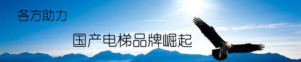 【专题】各方助力国产品牌电梯崛起