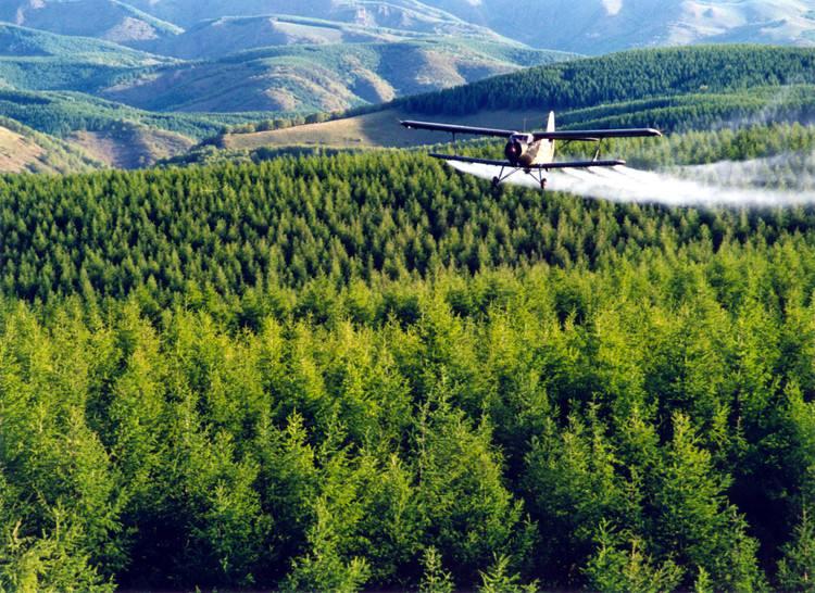 """为什么是塞罕坝?   循着绿色的召唤,穿行在她的林海里,从每棵树、每个塞罕坝人身上,我们找到了答案。这就是矢志不渝的拼搏和奉献,对绿色理念的彻悟和坚守,对中华民族永续发展的使命和担当。   绿色奇迹——塞罕坝从一棵树到一片""""海""""的实践证明,以超乎想象的牺牲和意志苦干实干,荒原可以变绿洲,生态环境一定能实现根本性改善   树,在塞罕坝是最平常的东西,也曾是塞罕坝最稀罕的东西。   从塞罕坝机械林场场部驱车向东北方向驶去,进入红松洼自然保护区。在一整片低矮"""