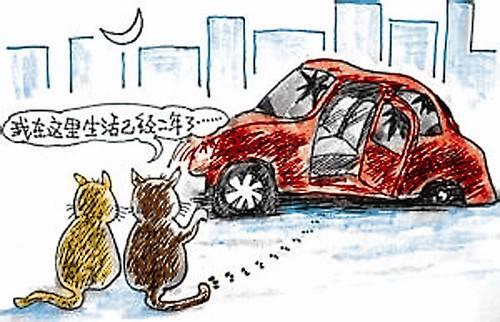 """北京全面排查""""僵尸车"""" 已处置1700多辆"""