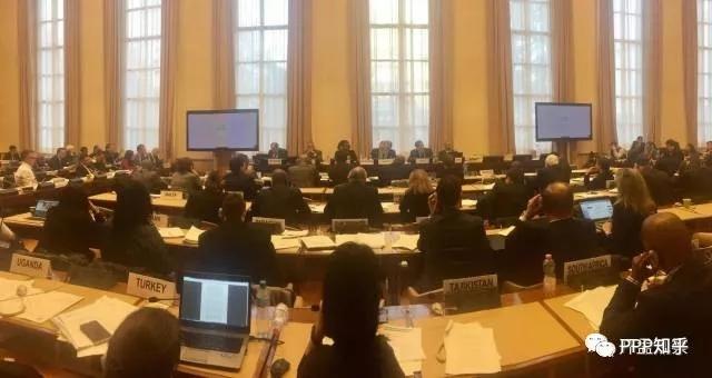 李开孟强调联合国应重视中低收入国家PPP模式健康发展