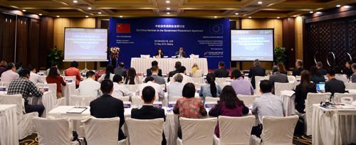 中欧龙8国际对话在京举行