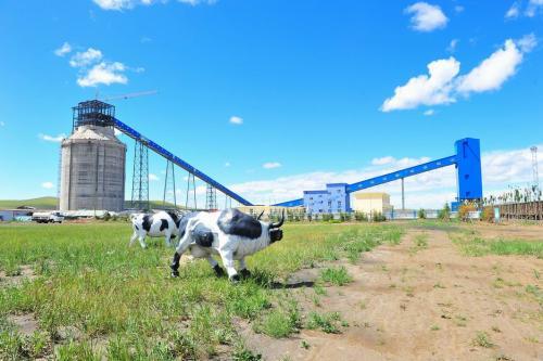 内蒙古贺斯格乌拉矿区南露天煤矿项目获核准