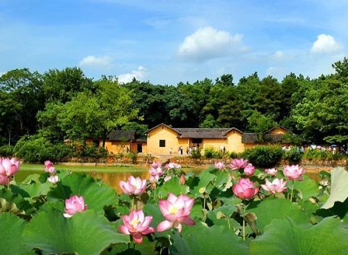【发展改革委】推进乡村旅游?#20013;?#20581;康发展