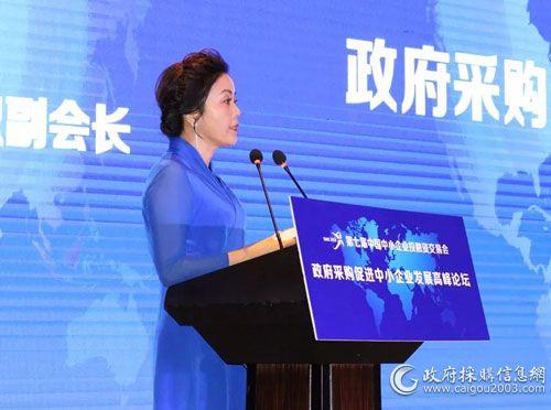 中國中小企業協會專職副會長馬彬