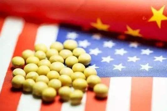 中國將恢復采購美國農產品