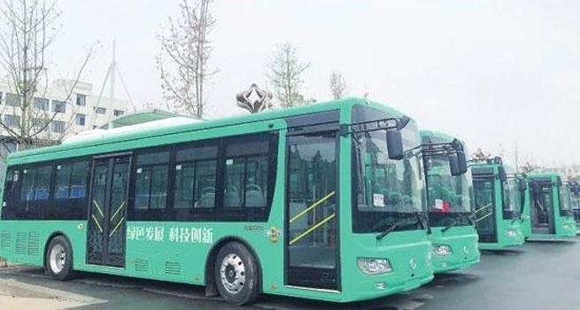 """烟台40台新能源公交车""""开跑"""""""