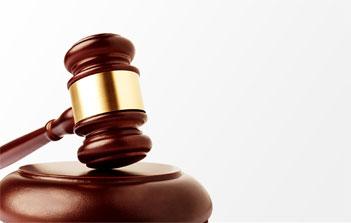 新疆11月起開展政府采購代理機構監督檢查工作
